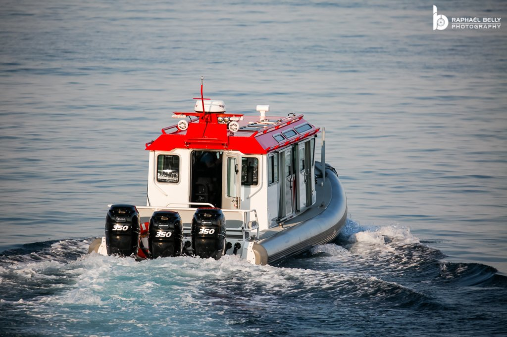 Wolf Tender to Hampshire II yacht